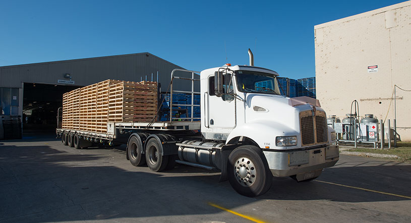 plain pallets delivery