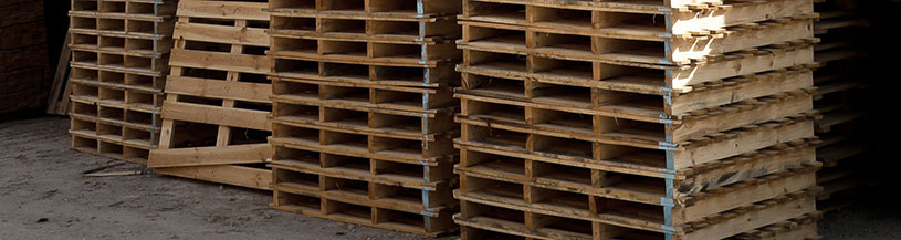 The Best Pallets for Pharmaceutical Products | Plain Pallets